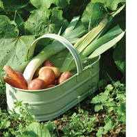 Garden Trading - Original accessories and lighting for home, garden and outdoor life - Oval Trug - Apple Green