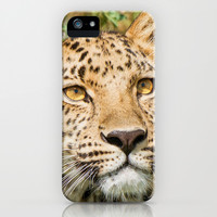 LEOPARD LOVE iPhone & iPod Case by Catspaws   Society6