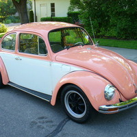 Volkswagen : Beetle - Classic BEETLE