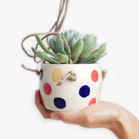 Small Spells Multi-Color Dot Hanging Planter for Poketo