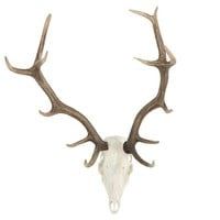Deer Skull Wall Art