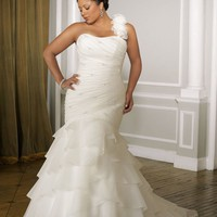 pictures of  Mermaid Organza Plus Size Wedding Dress WDPS016