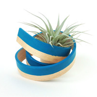 Hand-Bent Coil Air Plant Holder in Blue