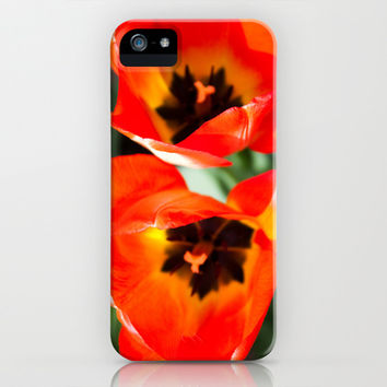 Anatomy of a Tulip, Orange iPhone & iPod Case by Legends of Darkness Photography