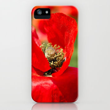 Anatomy of a Poppy: Bed of Petals iPhone & iPod Case by Legends of Darkness Photography