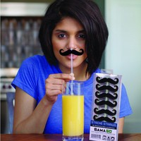 Stache Straws - Mustache Straws! - Whimsical & Unique Gift Ideas for the Coolest Gift Givers