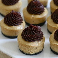 Mini Peanut Butter Chocolate Cheesecakes » Annie's Eats