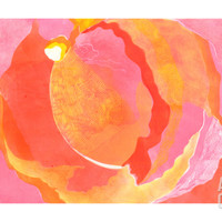 Cabbage Rose I Giclee Print by Carolyn Roth at Art.com