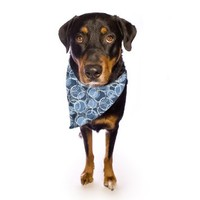 """Kess InHouse Julia Grifol """"Simple Circles in Blue"""" Pet Bandana and Scarf, 28 by 20 by 20-Inch"""