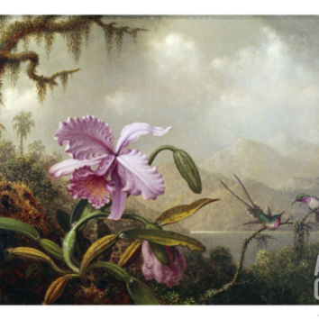 Hummingbirds and Orchids Giclee Print by Martin Johnson Heade at Art.com