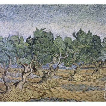 Olive Orchard, Violet Soil Giclee Print by Vincent van Gogh at Art.com
