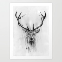 Red Deer Art Print by Alexis Marcou