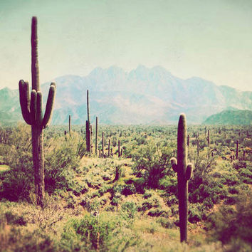 Southwest Photograph Wild West Fine Art Photography Arizona vintage colors green cactus mountains desert landscape nature travel photo