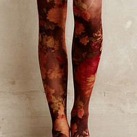 Vinca Tights by Tintoretta Purple Motif