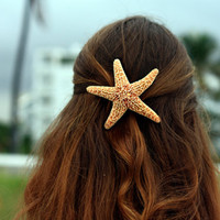 Large Sugar Starfish Barrette