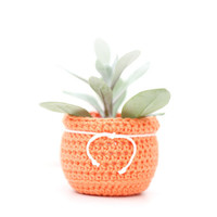 CROCHET KIT plant pot DIY orange planter gift for crocheter craft kit pattern