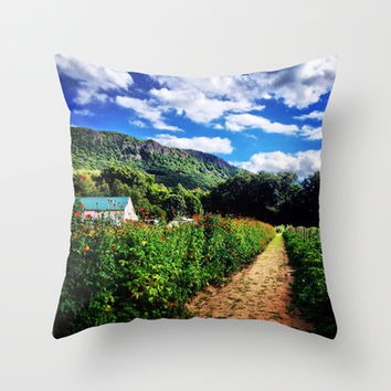 Mountainview Farm, 1 Throw Pillow by Legends of Darkness Photography