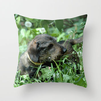 Doxie Love Throw Pillow by Erika Kaisersot