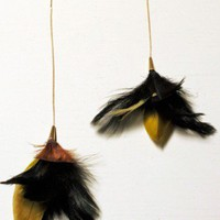 Feather Earrings - NEW - Shop Online