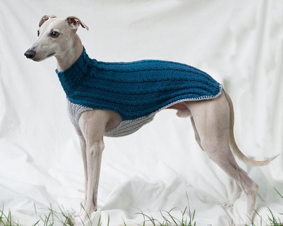 Whippet Sweater / Jumper (blue, gray) from GoodWitKnit on Etsy