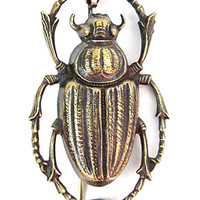 Apothecary Beetle Study Brooch