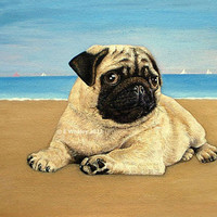 Original Fawn Pug Dog on a Beach Art Acrylic Painting