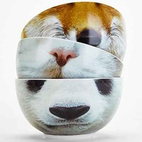 Animal Face Bowl-