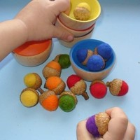 Rainbow Sorting Felted Acorns - Set of 18 Made from REAL Acorn Caps!