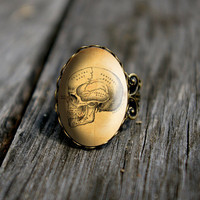 Vintage skull - adjustable ring