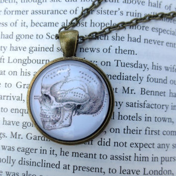 Anatomical Skull Necklace