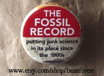 the fossil record by beanforest on Etsy