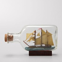 FOSSIL Fossil Finds By The Bay:Fossil Findss Ship in a Bottle SDI4703