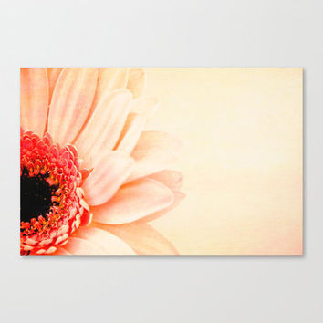Pretty In Peach II Stretched Canvas by secretgardenphotography [Nicola] | Society6