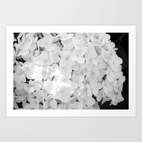 Hydrangea Art Print by ioanaPhotography | Society6
