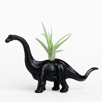 Small Dinosaur Planter with Air Plant Room Decor, College Dorm Geekery