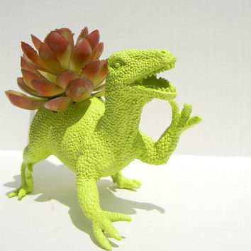 Raptor Dinosaur Planter Gift Ready to Plant Teacher Gift Dorm Decor
