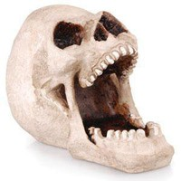 - Open Plain Skull Polyresin Ashtray - each - Other