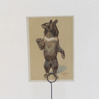 Vintage Laptev (Himalayan bear) Postcard - 1956, Soviet Artist. Condition 8/10