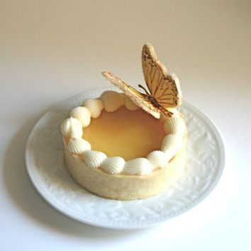 Edible Sugar Butterflies Pale Yellow and by andiespecialtysweets