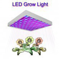 buy cheap LED Grow Light with Super Harvest Colors (NASA Red and Blue) wholesale on China Gadget Land