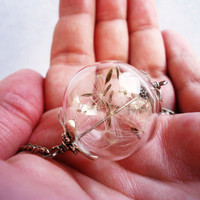 5 Bridesmaid Gifts, Real Dandelion Seed Glass Ball Necklace, Lucky You