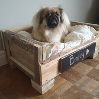 DIY Pallet Pet Beds | Shelterness