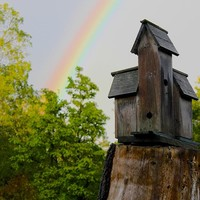 Birdhouse And Rainbow