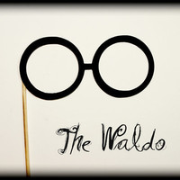 Eye Glasses on a Stick- The Waldo