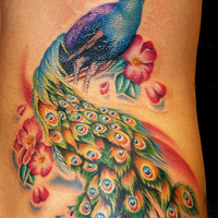 Off the Map Tattoo : Tattoos : Cecil Porter : peacock