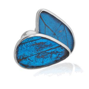 Aymara Blue Dream Butterfly Cufflinks-CL-AYA-0027