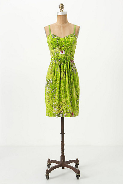 Lawnscape Dress