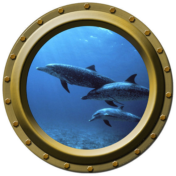 Dolphin Family Porthole Vinyl Wall Decal by WilsonGraphics