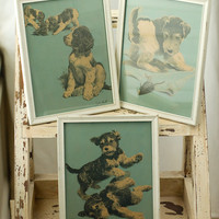 Framed Puppy Pictures Shabby Vintage