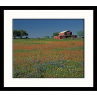 Great American Picture Texas Barn and Field Framed Photograph - Adam Jones - AJ30987
